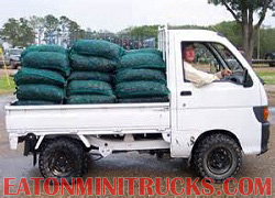carry a 1000 lbs load easy in a mini truck