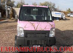 Suzuki 4wd mini truck Realtree ap pink camo wrap