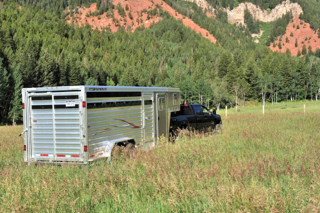 featherlite trailer stock combo cattle
