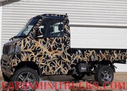 air brush pain job on a Suzuki carry 4x4 mini truck